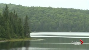 Toronto student missing in Algonquin Park presumed drowned